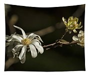 Star Magnolia Blossoms Tapestry