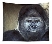 Stare-down - Gorilla Style Tapestry