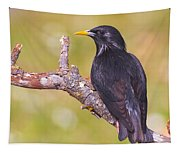 Starlings Tapestry