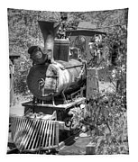 Steam Locomotive Old West V3 Tapestry