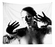 Steamed Glass Tapestry