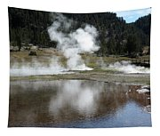 Steamy Reflections Tapestry