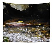 Steelhead Resting In The Shallows Tapestry