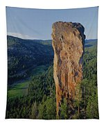 1a5719 Steins Pillar Oregon Tapestry