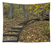 Step Trail In Woods 12 Tapestry