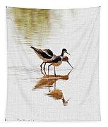 Stilt And Avocet Eat Together Tapestry