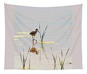 Stilt Chick Exploring Its New World Tapestry