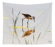Stilt Chick Looking For Food Tapestry