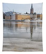 Stockholm Winter Tapestry