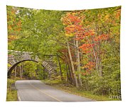Stone Arch Bridge In Acadia National Park Tapestry