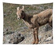 Stone Lamb Tapestry