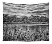 Storm Passing The Pond In Bw Tapestry