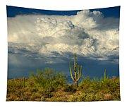 Stormy Desert Skies  Tapestry