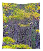Straggly Pines Tapestry
