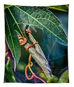 Strangler Tapestry