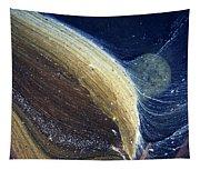 Stream Astronomy 1 Tapestry