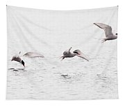 Stroboscopic Study Of Flying Arctic Tern Over Lake Tapestry