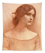 Study For The Lady Clare Tapestry