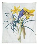 Study Of Four Species Of Crocus Tapestry