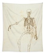 Study Of The Human Figure, Anterior View, From A Comparative Anatomical Exposition Of The Structure Tapestry