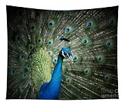 Stunning 1 Tapestry