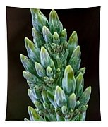Succulent Bloom Tapestry