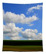 Summer Blur Tapestry