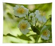 Summer Flower Tapestry