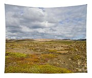 Summer In Iceland Tapestry