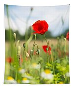 Summer Meadow With Red Poppy Tapestry