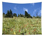 Summer Mountain Landscape Tapestry