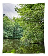 Summer Pool Cannock Chase Tapestry