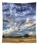 Summer Sky Farm Tapestry