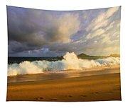 Summer Storm Tapestry