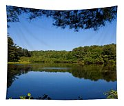 Summers Blue View Tapestry