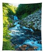 Sun Beam Falls Tapestry