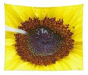 Sun Dial Tapestry