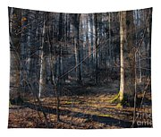 Sun In The Forest Tapestry