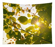 Sun Shining Through Leaves Tapestry