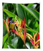 Sunbird On Heliconia Ginger Flowers Singapore Tapestry