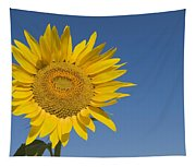 Sunflower, Helianthus Annuus Tapestry