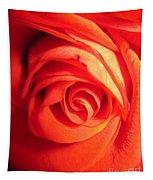 Sunkissed Orange Rose 11 Tapestry