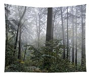 Sunlight And Fog Tapestry