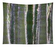 Sunlight Through Cacti Tapestry