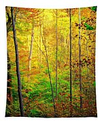 Sunlights Warmth Tapestry