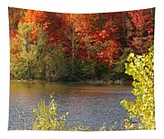 Sunlit Autumn Tapestry