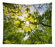 Sunlit Leaves Tapestry