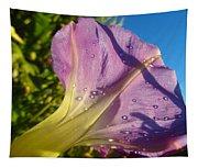 Sunlit Morning Glory Tapestry