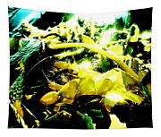 Sunlit Seaweed Tapestry