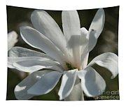 Sunlit White Magnolia Tapestry